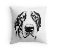 Swiss Mountain Dog Throw Pillow