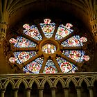 Stained Glass Christ Church Cathedral Oxford UK by tunna