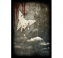 Death of a Butterfly Photographic Print