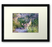 Are We In Your Way  Framed Print