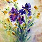 Irises by Robin Spring Bloom