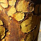 Rusty Hydrant by WildestArt