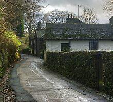 A Village Lane by Jamie  Green