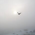 flight by tyrannous
