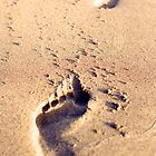 Footprints in the sand by timscottrom