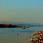 boating1 by naresh dev pant