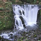 Alva Glen Waterfall by busterbrownbb