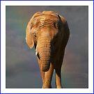 Nellie The Elephant by John Dalkin