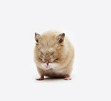 Sleepy Hamster - iPhone by Andrew Bret Wallis
