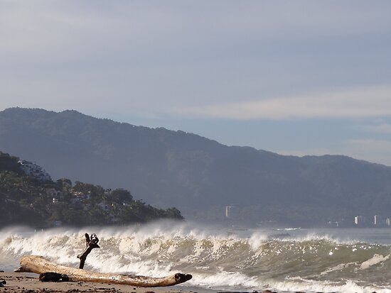 Ocean Front - Frenta Al Oceano by Bernhard Matejka