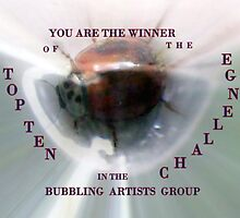 Challenge Banner  Entry in Bubbling Artists Group by Heidi Mooney-Hill