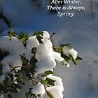 After Winter by Gina J