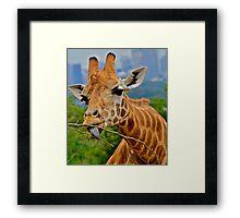 Giraffe Snacks / Refreshments ???. Framed Print