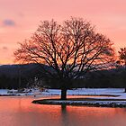Sunrise at Boyne Mountain Resort by Melissa McKenzie