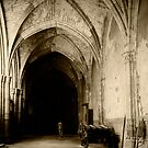 Cathedral of Toledo, Spain, in sepia by Elana Bailey