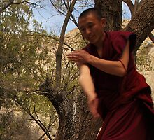 Sera Monastery - Debating the Buddist Scriptures 1 by Mark Bolton