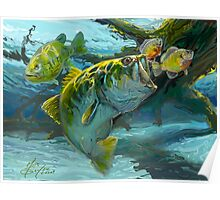 Large Mouth Bass and Blue Gills Poster