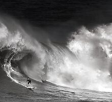 Surfer At Waimea Bay 2011 by Alex Preiss