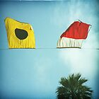 beach flags by Inessa Burlak