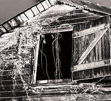 Loft Window by Marcia Rubin