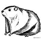 Groundhog by joesmithrealnam