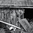 The Barn (b&w) by Robin Lee