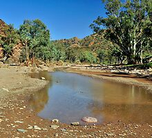 Parachilna Gorge Flinders Ranges by Terry Everson