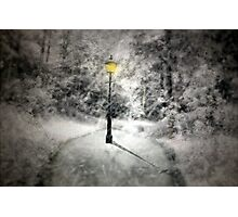 This way to Narnia Photographic Print