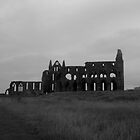 Whitby Abbey by tunna