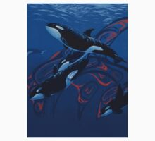 Orca Days by Graeme  Stevenson
