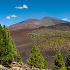 Summer at Teide by Raico Rosenberg