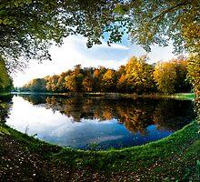 Forest lake by Maxim Mayorov
