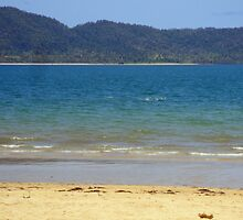 Dunk Island seen from South Mission Beach by STHogan