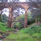 Historic Railway Viaduct, Picton by Michael John