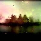 Magic falls upon the night... © by Dawn M. Becker