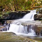 Jerusalem Creek, Barrington Tops National Park by 4thdayimages