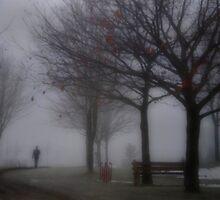 Walking Around in a Fog by Robin Webster