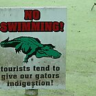 No Swimming,Gators by kevint