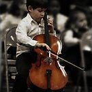Maestro by Jamie Lee