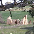 'The Hopes & Dreams'!  early 19th cent. Ruins, Springton, S.Australia by Rita Blom