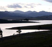 Lake St Clair evening light sabre by Hugh Cross