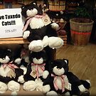 Five Charming Tuxedo Stuffed Cats For Sale! by Jane Neill-Hancock
