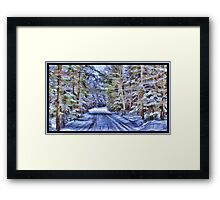 A Fairy Tale Forest with Snowy Evergreen Trees in the Cold Canadian Wilderness Framed Print