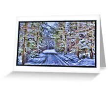 A Fairy Tale Forest with Snowy Evergreen Trees in the Cold Canadian Wilderness Greeting Card