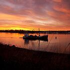 Boats on Cove Sunset by Matt  Grindle