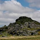 Longaford Tor, Dartmoor by Tony Steel