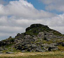 Longaford Tor, Dartmoor by Tony Steel