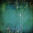 pond II by Iris Lehnhardt