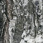 Broken Texture by Lennox George