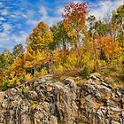 Autumn on the Rocks by Jo-Anne Gazo-McKim